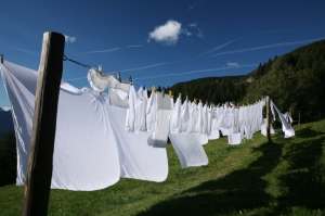 LARGE FRESH clothesline photo