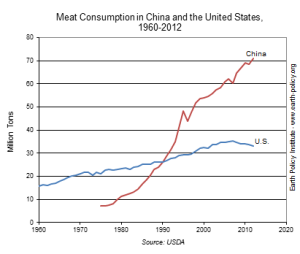 Meat Consumption in China and US
